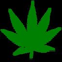 Sabor a Cannabis