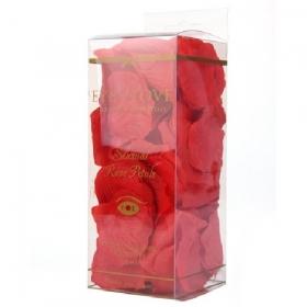 Pétalos de rosa - rojo